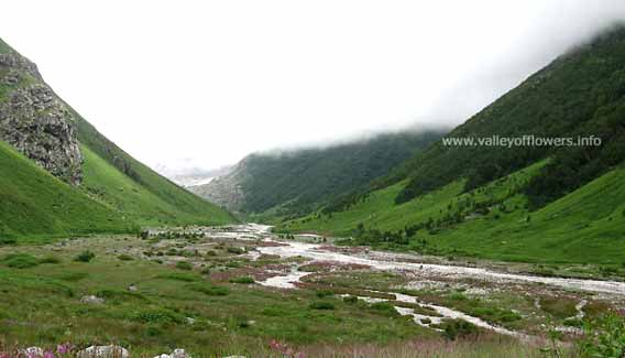 Pushpawati river bed in valley of flowers. We will have our lunch here, right in the middle of the river. Kindly observe a pink shade on the river bed also. This pink shade is of a colony of a beautiful flower.