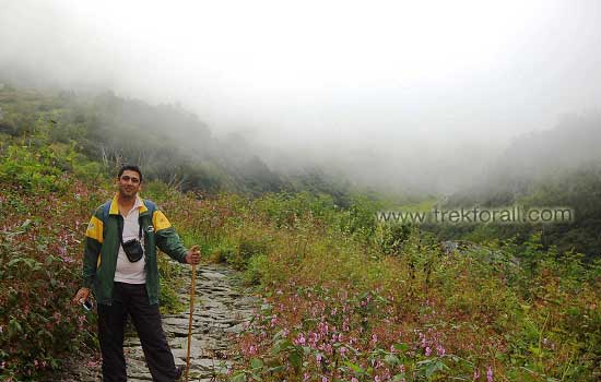 Tour operator Devkant Sangwan in the middle of Valley of Flowers