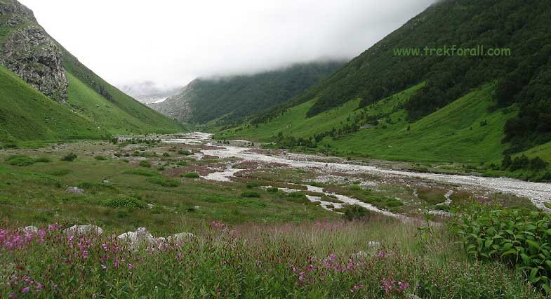 pushpawati river bed, the most beautiful part of valley of flowers