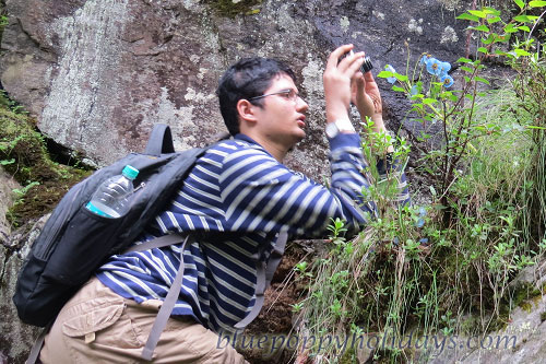 Our Group Member clicking Photos on the way to Valley of Flowrers. This is how we got late.