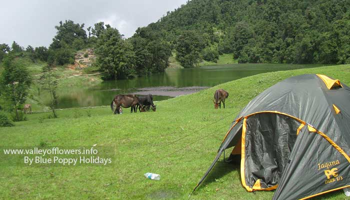 My camp at Deoria Tal.