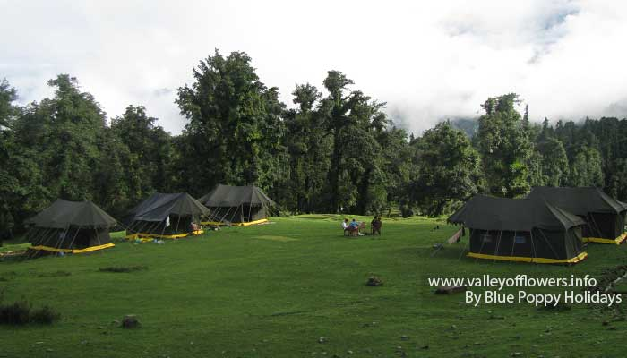 View of our tents near Chopta.