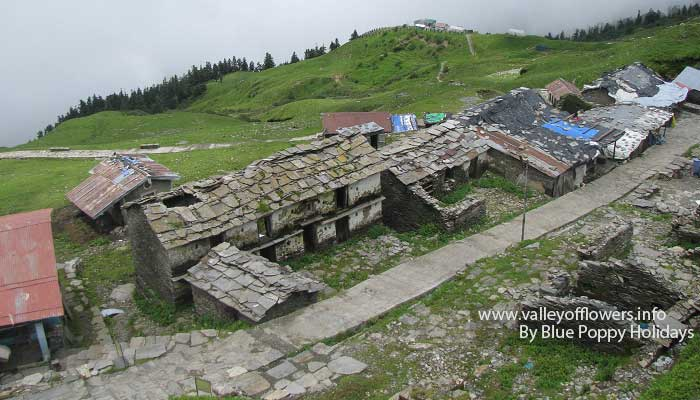 A beautiful view on our trek to Tungnath Temple.
