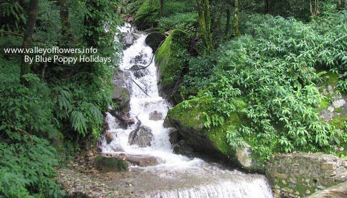 A beautiful waterfall on the way to Chopta. You will see many such waterfalls in last 20 kilometers before Chopta.