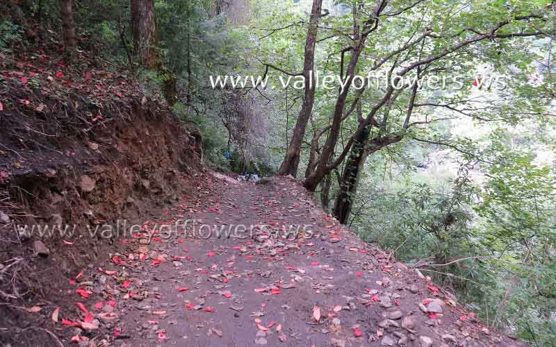 New trek between Govindghat and Ghangaria