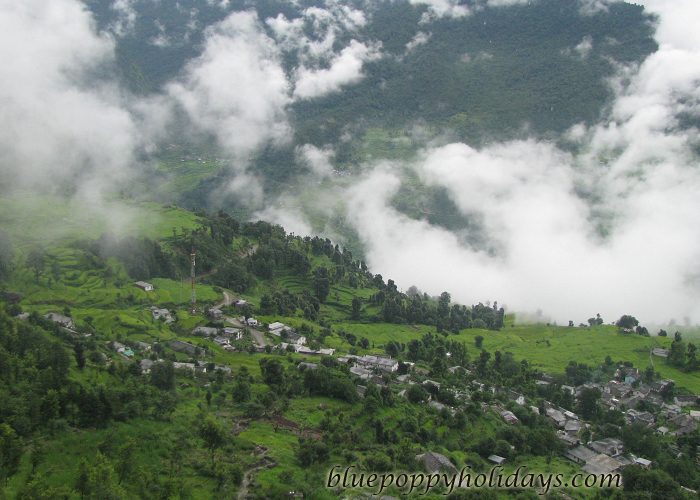 Arial view of Saari Village