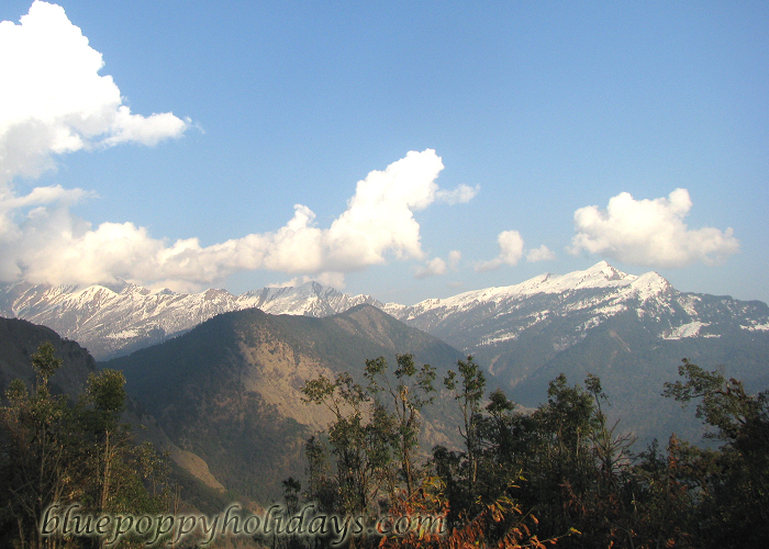 Majestic view of himalyan peaks from chopta