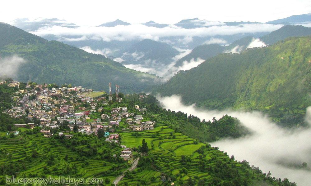 Saari Village Arial View