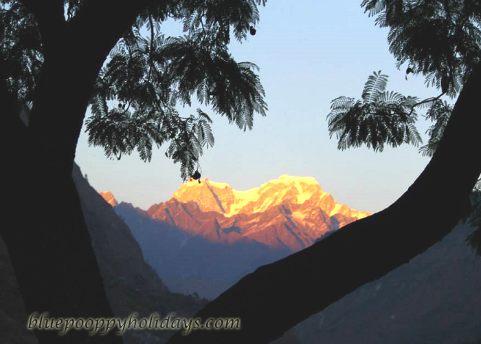 Hathi Peak view at surise from Auli