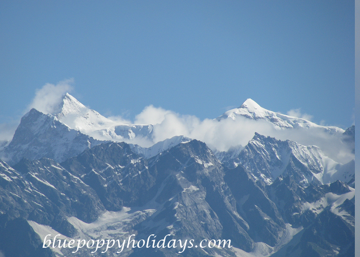 View of Himalyan Peaks from Auli