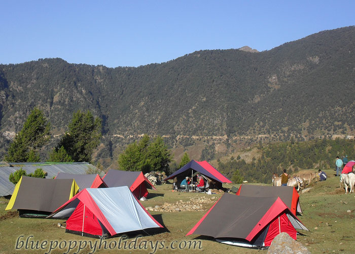 Camps at Khullara Top