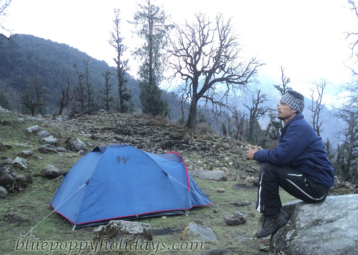 Camps at Tapovan