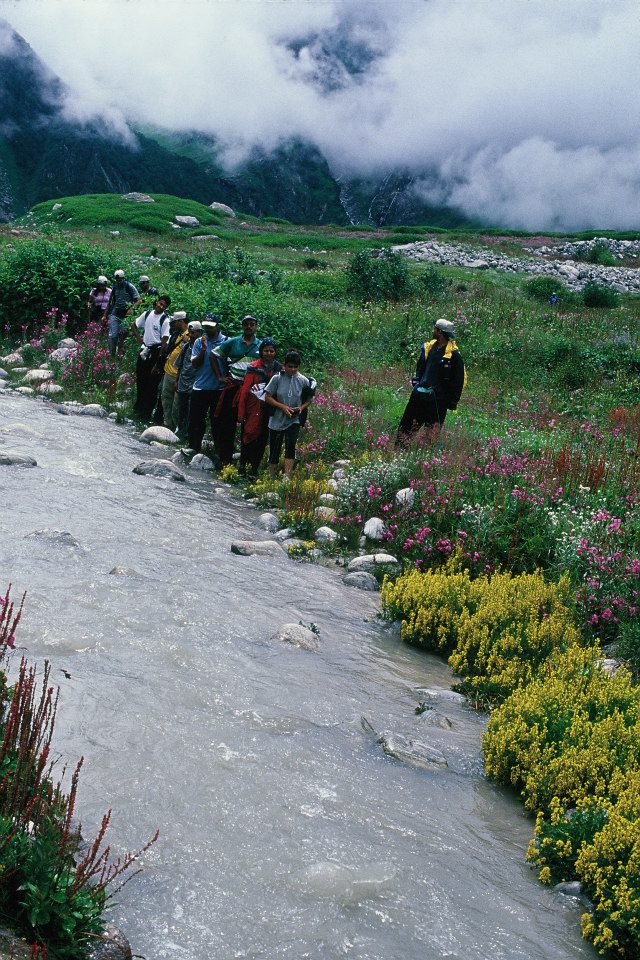 Pushpawati River bed, deepest in the Valley of Flowers