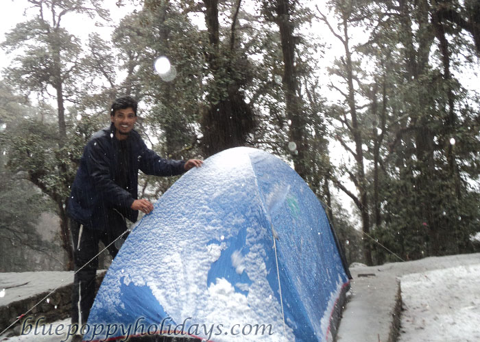 Snow Fall at Tapovan