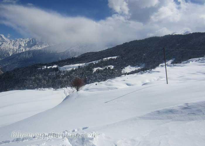 Snow Slopes at Auli