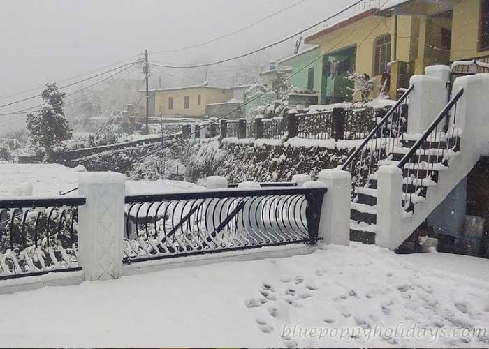 Snowfall at Joshimath